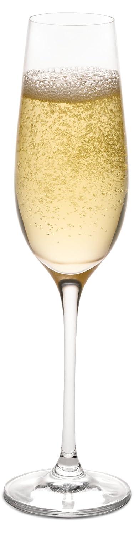 Ravenscroft Crystal Vintner's Choice Fluted Champagne Stemware, Set of 4 VC-26