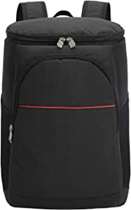 Foraineam Insulated Cooler Backpack Lightweight Leakproof Cooler Bag Lunch Backpack with Cooler for Lunch Picnic Hiking Camping Beach Park Day Trips
