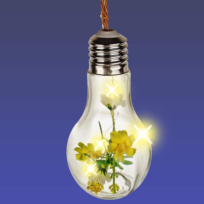 Name Pflanzen zum H/ängen // Aufh/ängen .. alles-meine.de GmbH LICHT Dekoglas LED Blumen /& Bl/üten inkl Glas Gl/ühbirne Lichterkette Sukkulente /& Kakteen 68 cm gro/ß