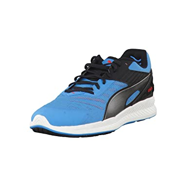 1e324bb037f2c8 Puma Men s Ignite V2 Running Shoes  Amazon.co.uk  Shoes   Bags
