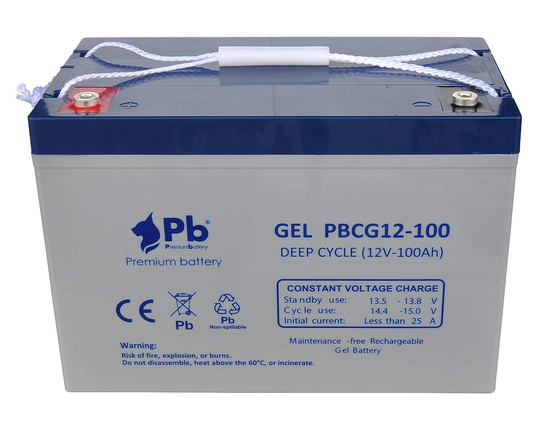 Batería GEL ciclo profundo 12V 100Ah: Amazon.es: Industria, empresas y ciencia