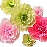 Amazon key spring paper flower decorations crepe paper flowers paper flower decorations large crepe paper flowers handcrafted flowers giant paper flowers mightylinksfo