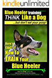 Blue Heeler Dog Training,Think Like a Dog, But Don't Eat Your Poop! | Here's EXACTLY How To Train Your Blue Heeler: Blue Heeler Breed Expert Dog Training