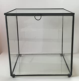 Decorative Glass Display Case Billingsblessingbags Org