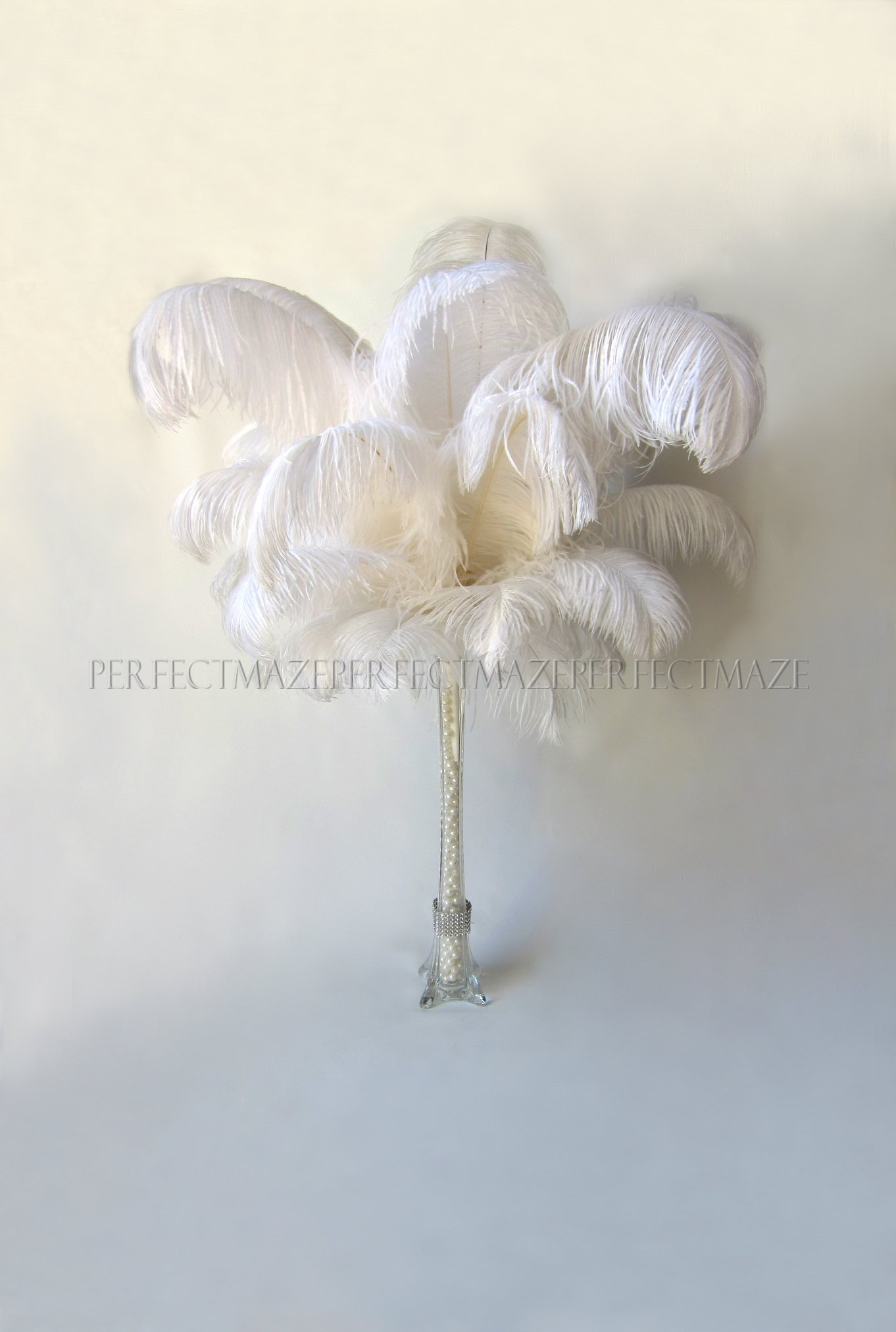 Perfectmaze 50 Piece 16''-18'' Ostrich Feather Premium Quality for Wedding Party Centerpiece Vase Decoration by Perfect Maze