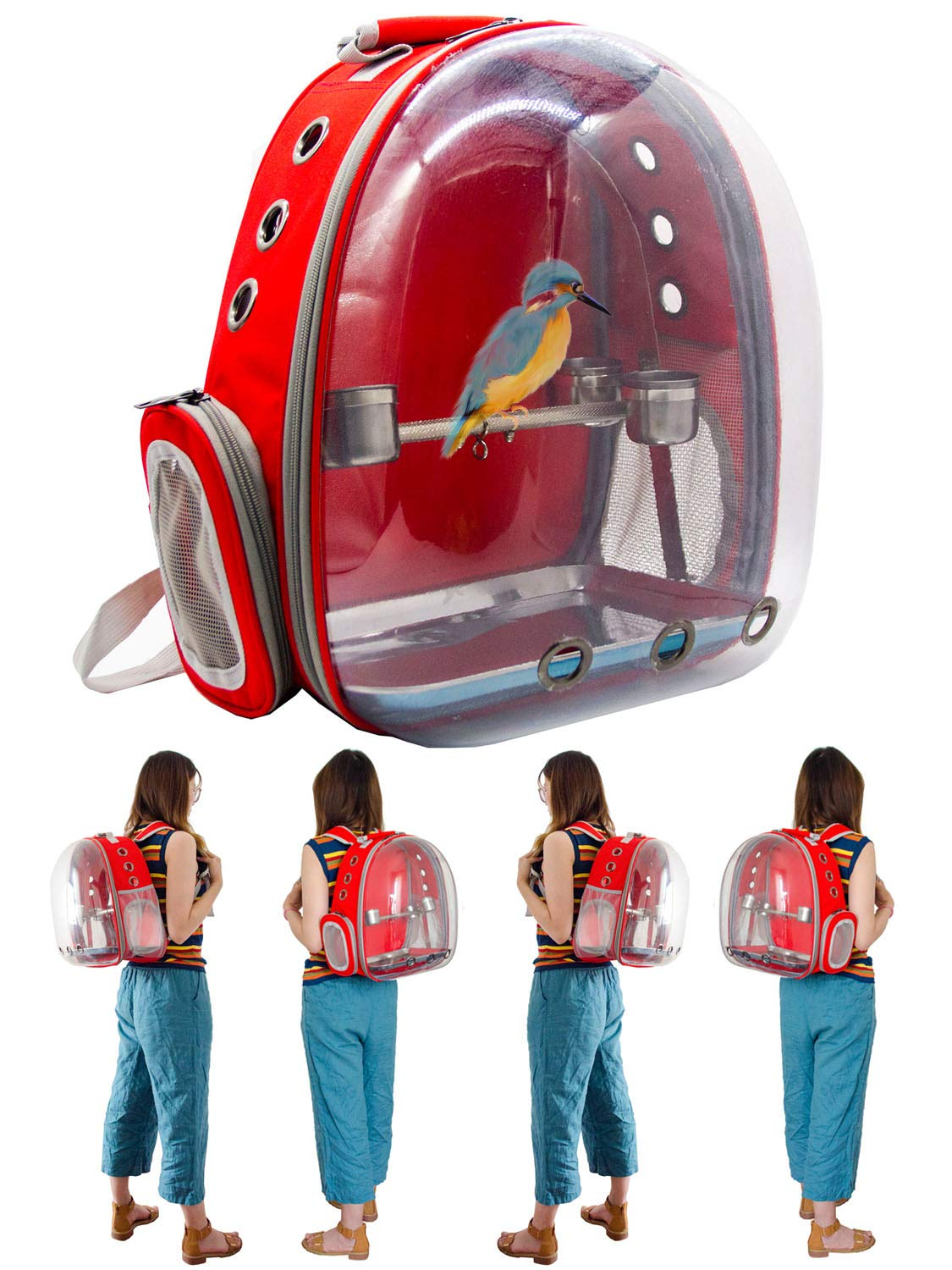 SHANTU Bird Small Parrot Carrier - 360°Sightseeing Bird Space Capsule Parrot Travel Backpack with Stainless Steel Stand Perch and Cups for Travel Outdoor Activity (Red) by SHANTU