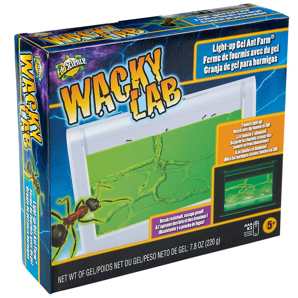 Edu Science Wacky Lab Light Up Gel Ant Farm
