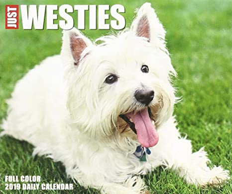 Just Westies 2019 Box Calendar (Dog Breed Calendar): Amazon