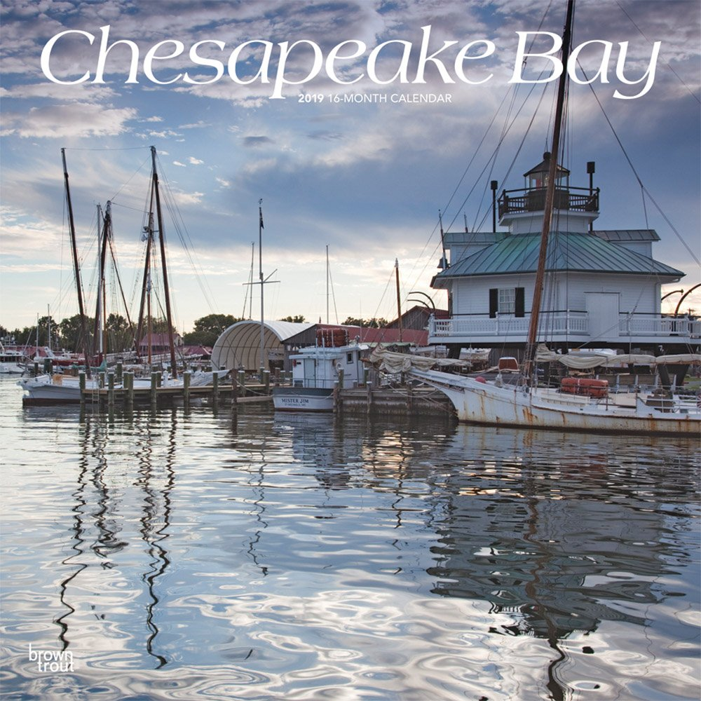 Download Chesapeake Bay 2019 12 x 12 Inch Monthly Square Wall Calendar, USA United States of America Scenic Nature Ocean Sea Coast (Multilingual Edition) ebook
