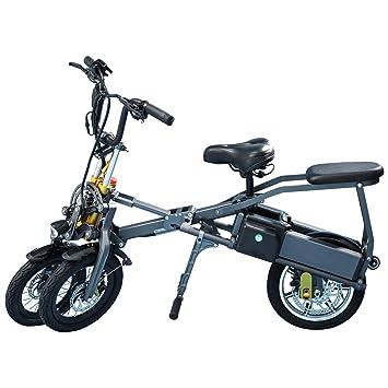 LANKELEISI JX003 B1STD - Patinete de bicicleta de triciclo ...
