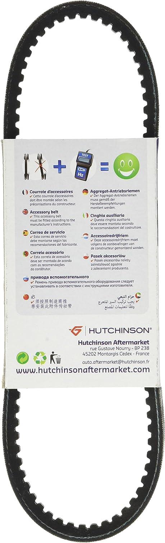 Hutchinson AV 10/Die 650/Keilrippenriemen