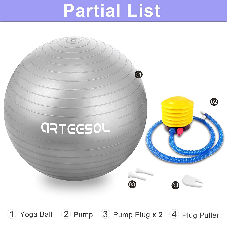arteesol Ballon dexercice Ballon Suisse auti Burst Core 45cm//55cm//65cm //75cm Ballon de Gymnastique Suisse avec Pompe Rapide pour la Grossesse et lentra/înement Pilates Training