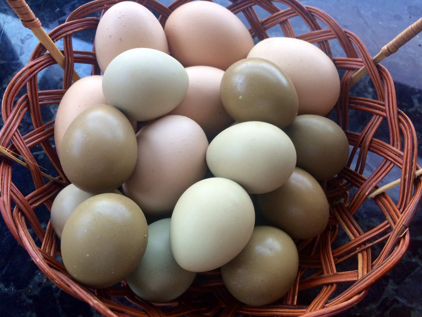 MacFarlane Fresh Pheasant Eggs