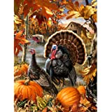 Avton Large Premium Full Drill DIY 5D Diamond Painting Kits for Adults and Kids - Adorable Pumpkin and Turkey Design…