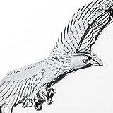 Bully WL108-C Eagle License Plate Frame - Chrome