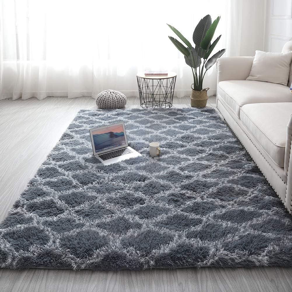 Adarl Polyester Blend Soft Area Rugs Living Room Rectangle Carpets for Bedroom Home Decor Rug, Light Gray 2.62 x 5.25ft