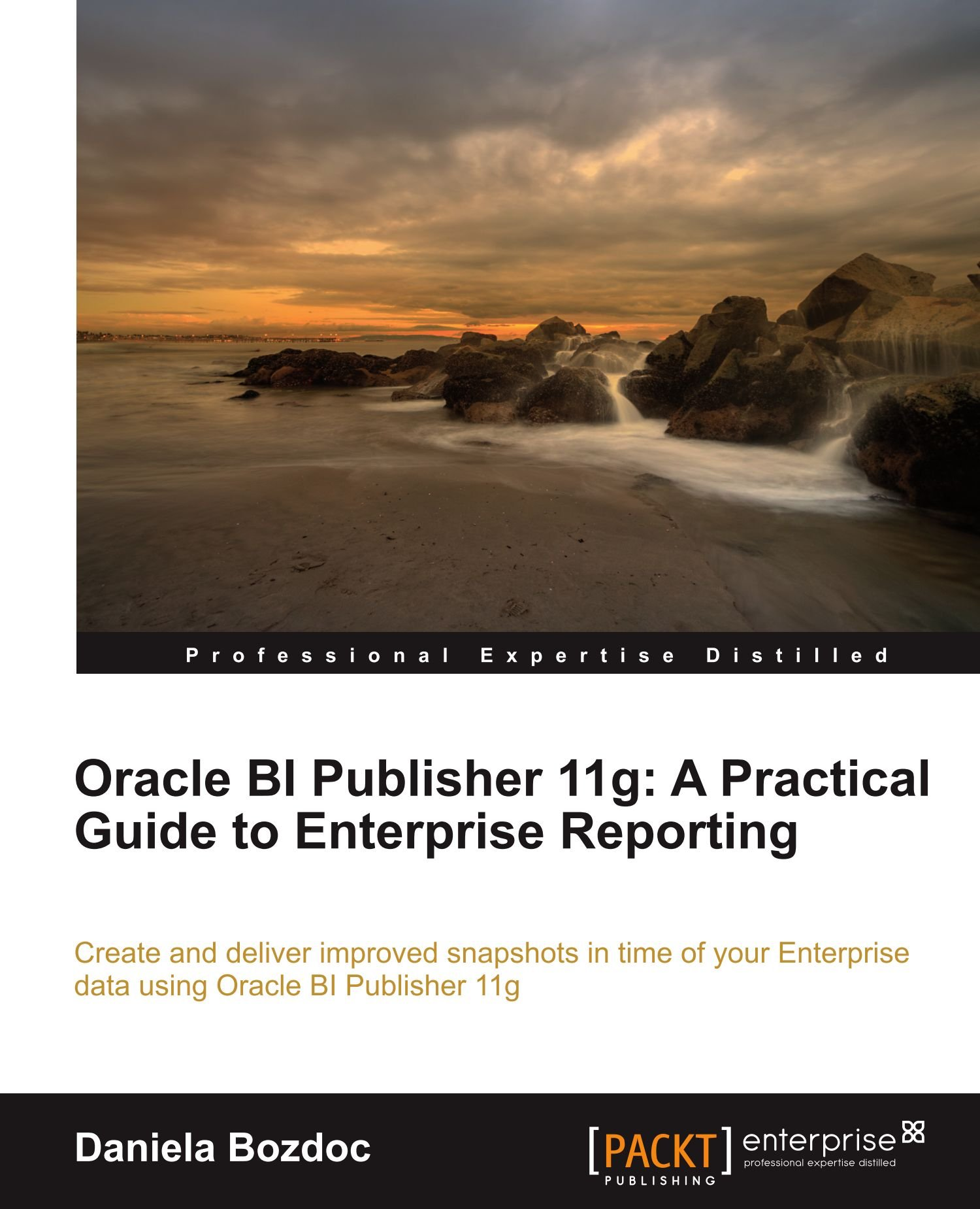 Oracle bi publisher 11g a practical guide to enterprise reporting oracle bi publisher 11g a practical guide to enterprise reporting daniela bozdoc 9781849683180 amazon books baditri Images