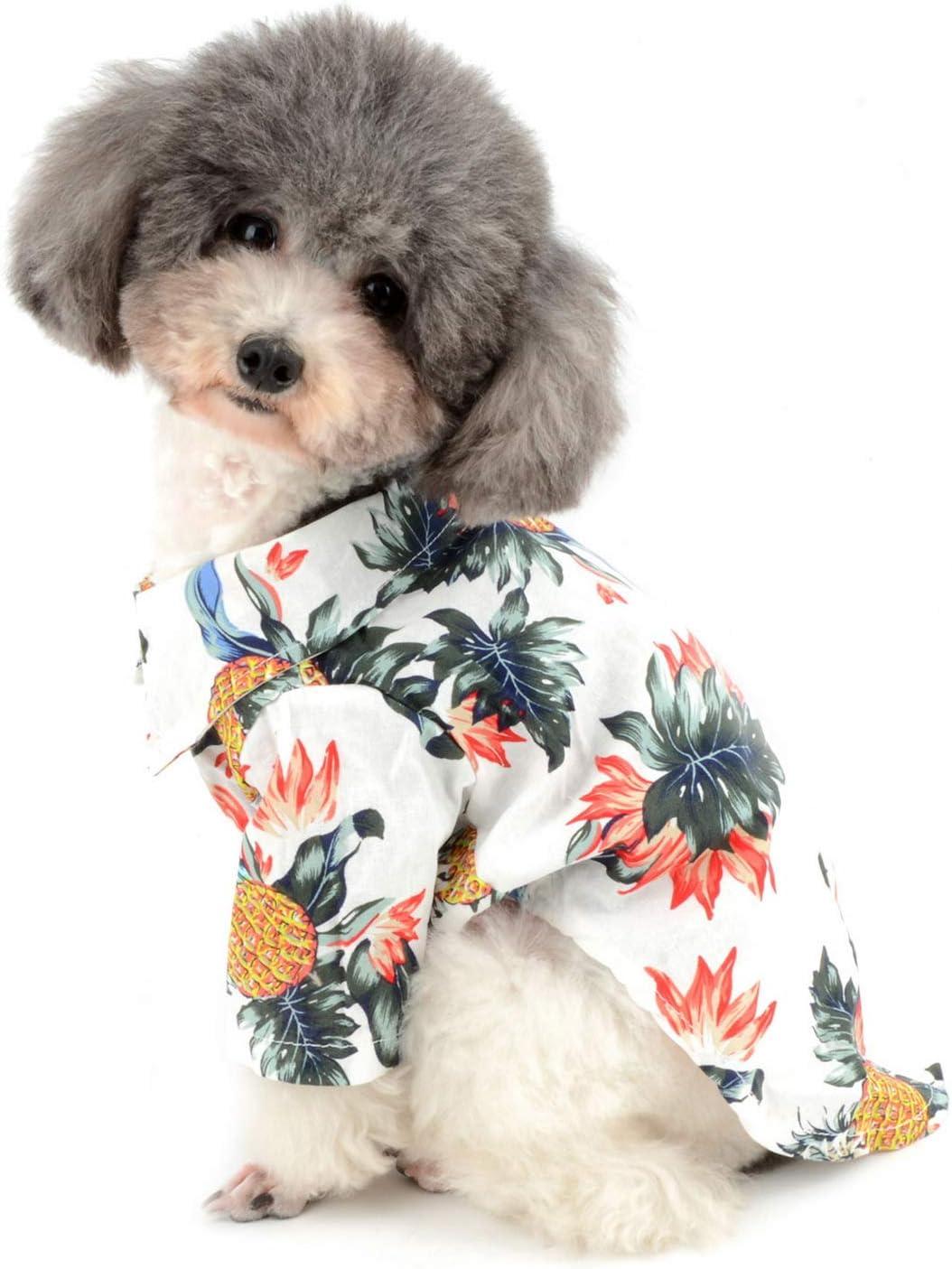 Zunea - Camiseta hawaiana para perro pequeño, camiseta de verano para mascotas colorido chaleco ropa campamento cachorro ropa de playa Sundress primavera ropa para perros gatos blanco M: Amazon.es: Hogar
