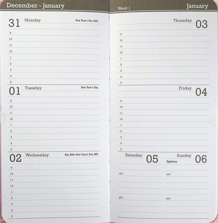 2019 Slim Pocket Week at Glance Calendar Planner Vivid Colors