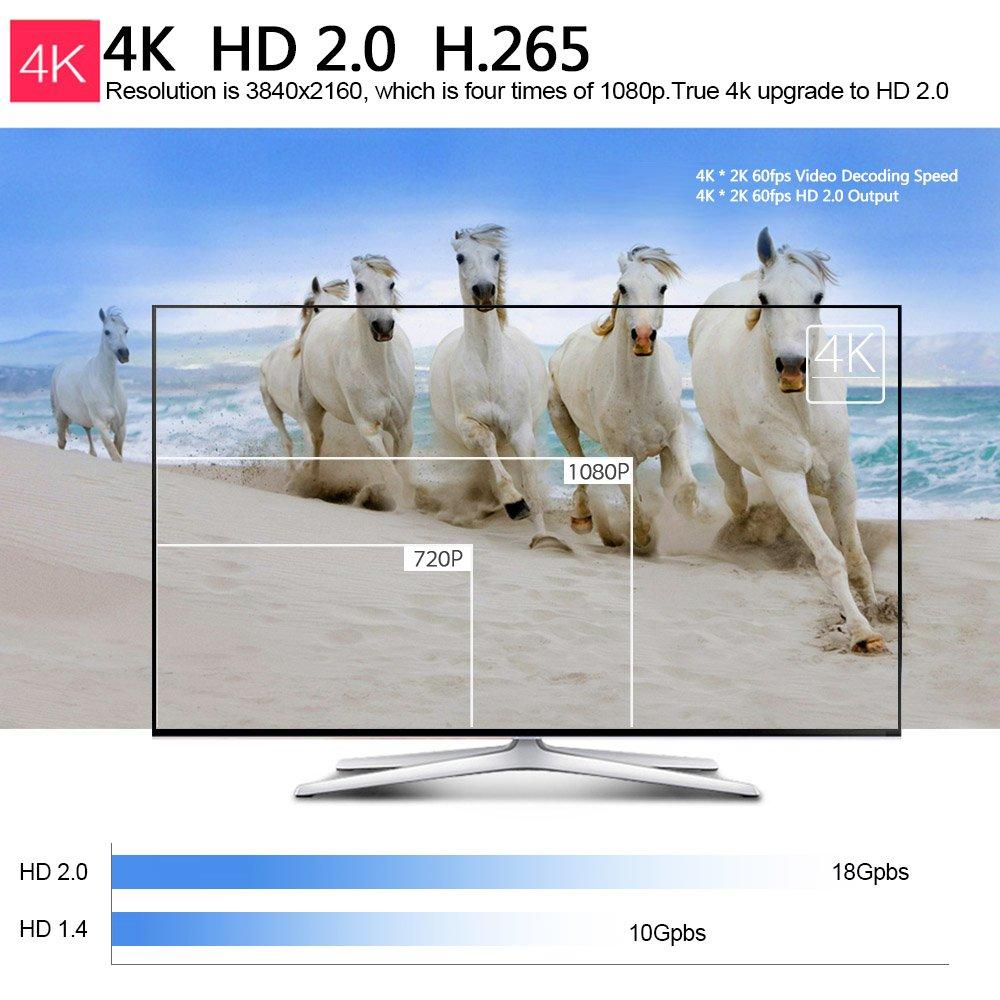 Docooler TV Dongle Android 6.0 TV Dongle Amlogic S905X Quad-Core 1G / 8G UHD 4K Mini PC DLNA VP9 H.265 WiFi HD Media Player US Plug by Docooler (Image #5)