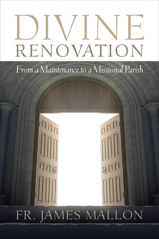 Image result for divine renovation