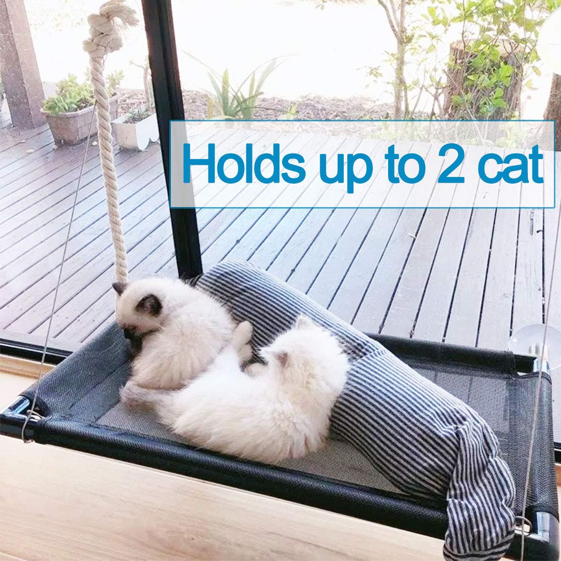 Cat Bed Window Perch Hammock Sunny Seat for Larger Cats Perches Window Mounted Cat Beds Two Kitty Window Seat Animal Pet Kitten Cot Beds Heavy Duty 4 Suction Cups Holds Up to 60lbs by Camlinbo