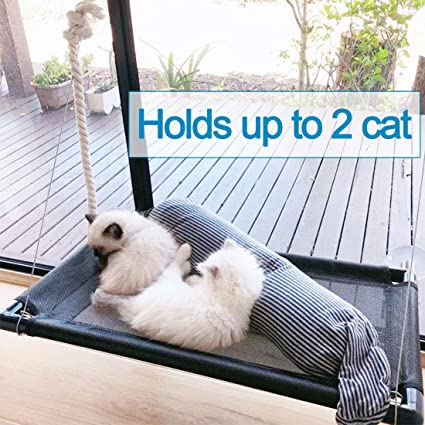 Superb Cat Bed Window Perch Hammock Sunny Seat For Larger Cats Perches Window Mounted Cat Beds Two Kitty Window Seat Animal Pet Kitten Cot Beds Heavy Duty 4 Andrewgaddart Wooden Chair Designs For Living Room Andrewgaddartcom