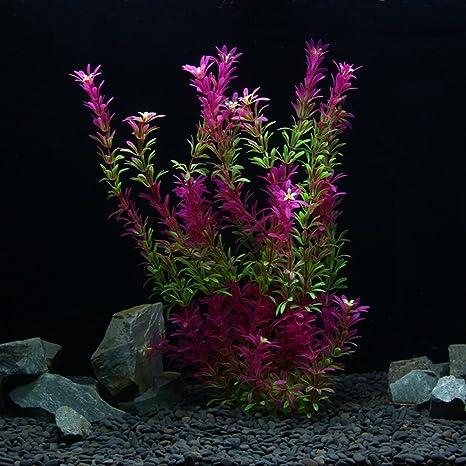OWIKAR Plantas de Acuario Plantas Artificiales Plantas de Plástico Acuario Rojo Gradiente Color Peces Decoración Paisaje