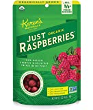 Karen's Naturals Just Organic Just Raspberries 1.5 Ounce Pouch (Packaging May Vary)