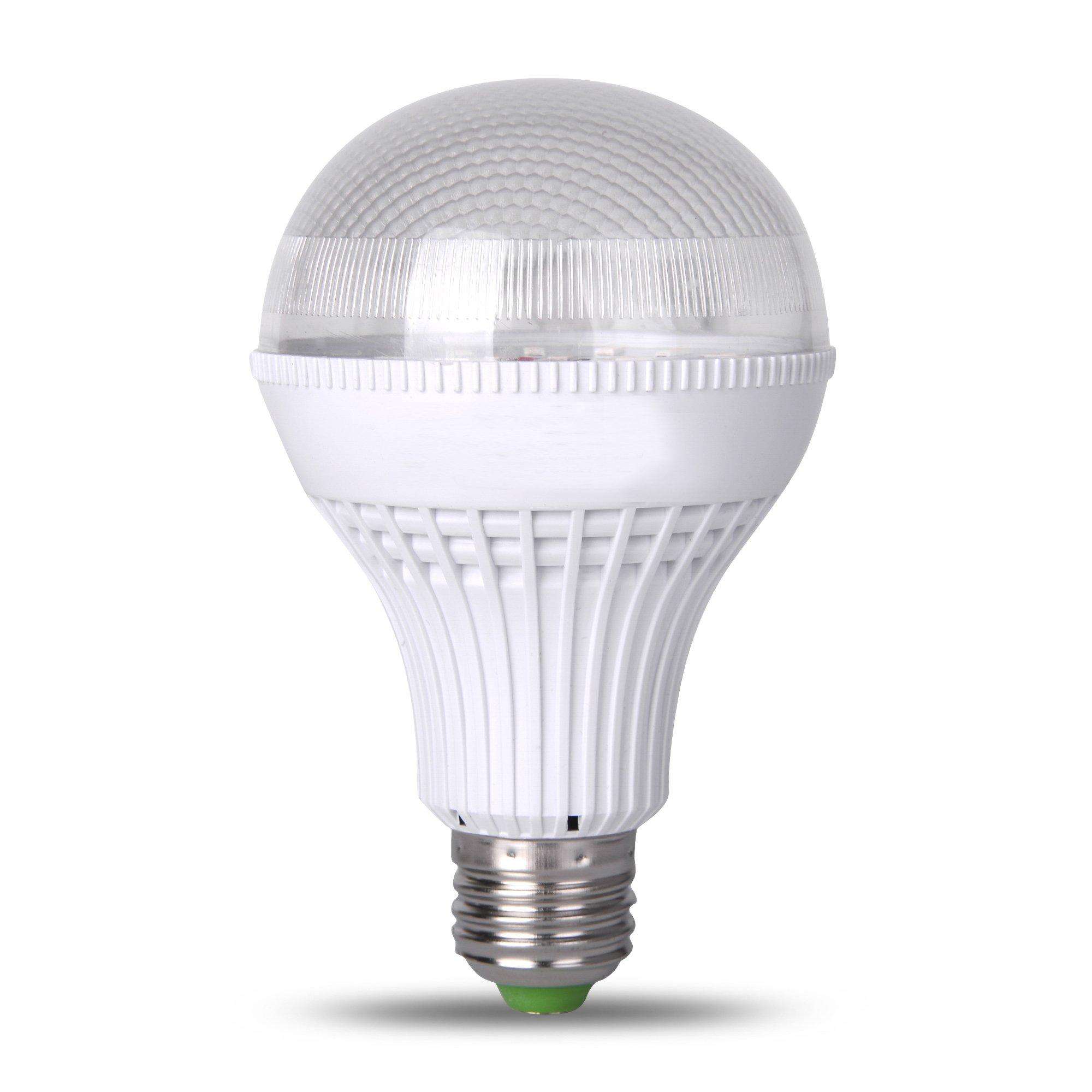 Led Bulb Dc: DC 12V-24V LED Light Bulb Recess Low Voltage 12W =75W E26