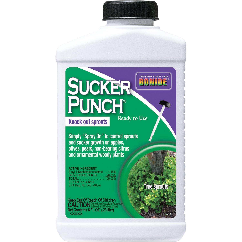 Amazon.com : Bonide Chemical 276 Sucker Punch RTU Brush Top, 8 .