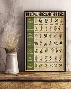 HolyShirts Medicinal Herbs and Their uses Poster (24 inches x 36 inches)
