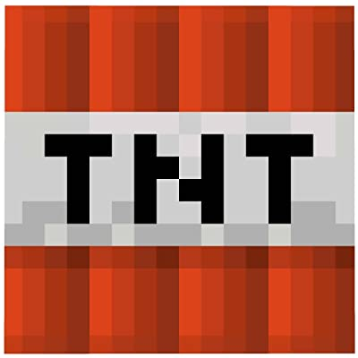 Jay Franco Minecraft Mojang TNT Explosive Block Graphic Super Plush Fleece Blanket Throw: Home & Kitchen