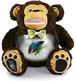 Teddy Tank Monkey Betta Fish Tank 8-Piece Premium Package
