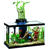 Elive Aqua Duo 10 Gallon LED Kit Aquarium Starter Kits