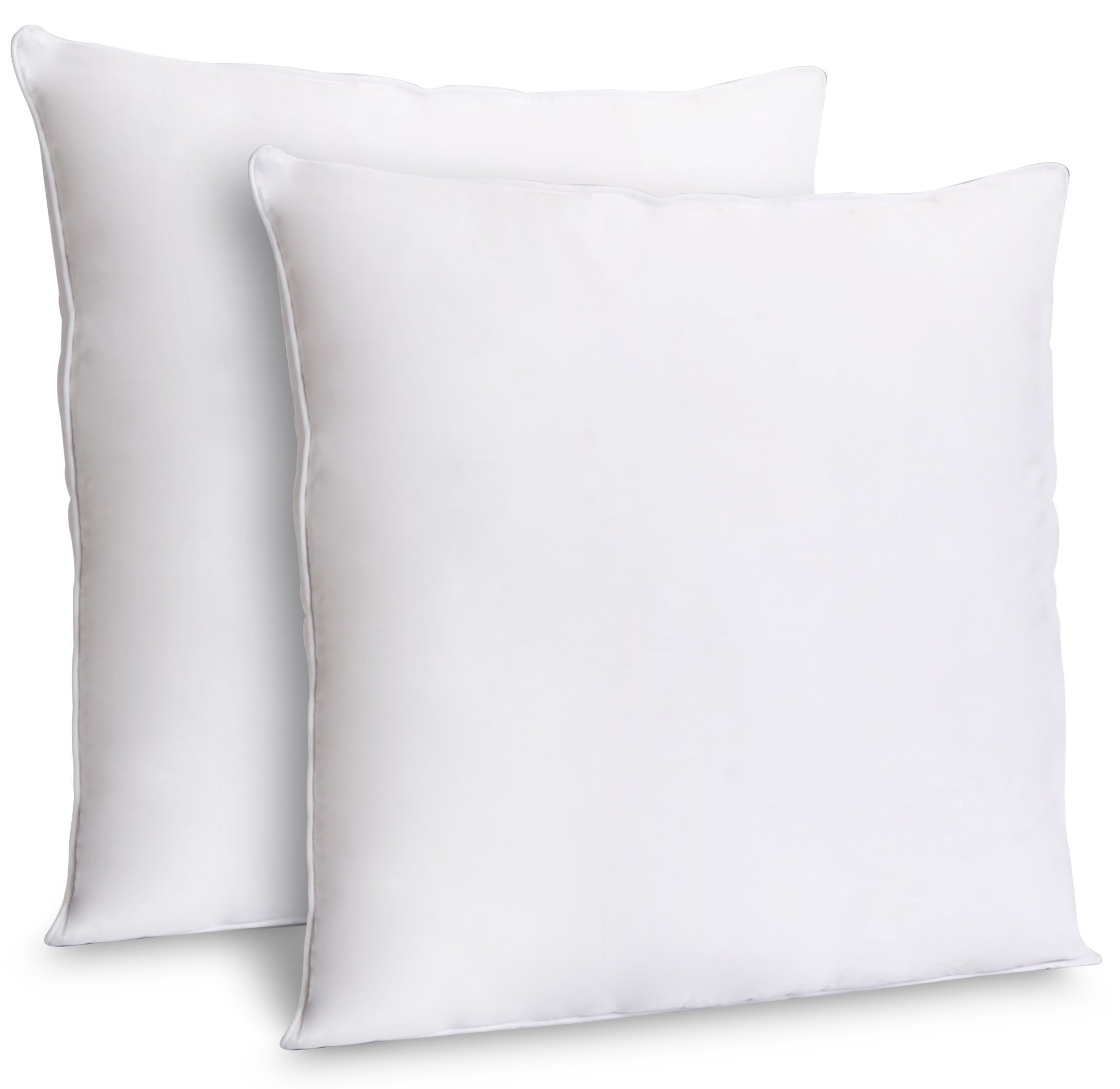 Zoyer Decorative Throw Pillow Inserts (2 Pack, White) - Square Indoor Sofa Pillows - Premium Poly Cotton Cover (16x16 Inch) by Zoyer