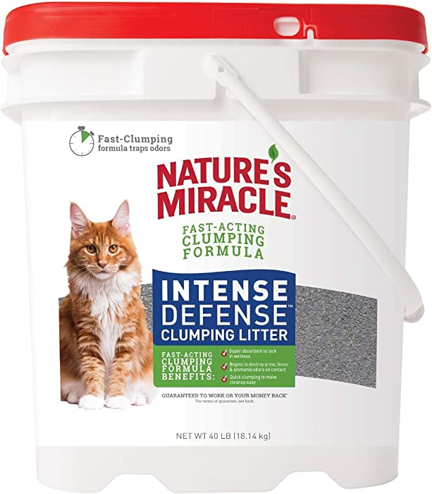 The Best Miracle Cat Litter