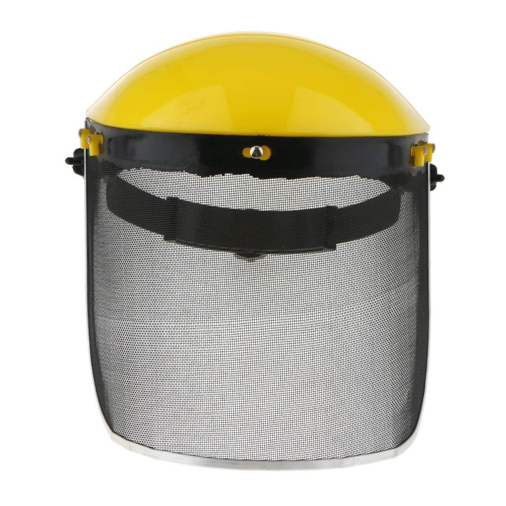 FLAMEER Máscara Protectora a Prueba de Explosiones Cubierta ...
