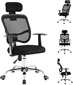 LIONROAR Office Chair Computer Chair Task Chair Executive Chair with Lumbar Support Armrest Breathable Mesh Back Adjustable Headrest Ergonomic Office Chair(Black)