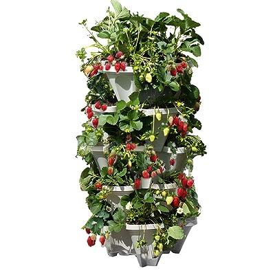 Mr. Stacky 5 Tiered Vertical Gardening Planter, Indoor & Outdoor: Garden & Outdoor