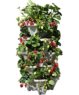 Amazon Com Large Vertical Gardening Stackable Planters By Mr