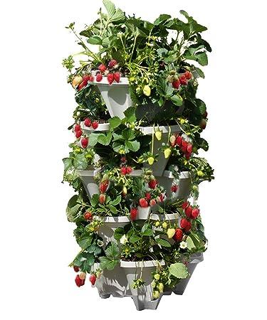 mr stacky 5 tiered vertical gardening planter indoor u0026 outdoor