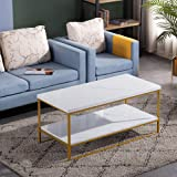 Bonnlo Modern Coffee Table,Faux Marble Top Rectangular Coffee Table with Metal Frame,Living Room Coffee Cocktail Table