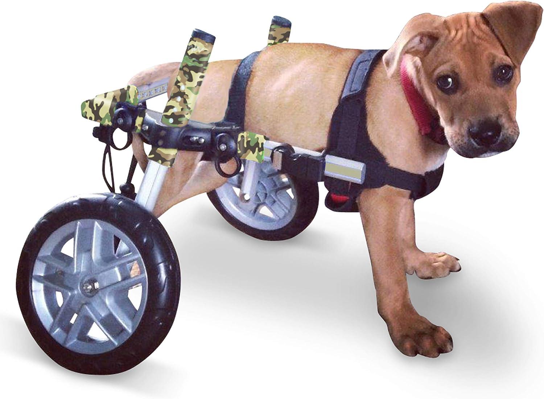 Perro silla de ruedas – para perros pequeños 8 – 25 libras – por ...