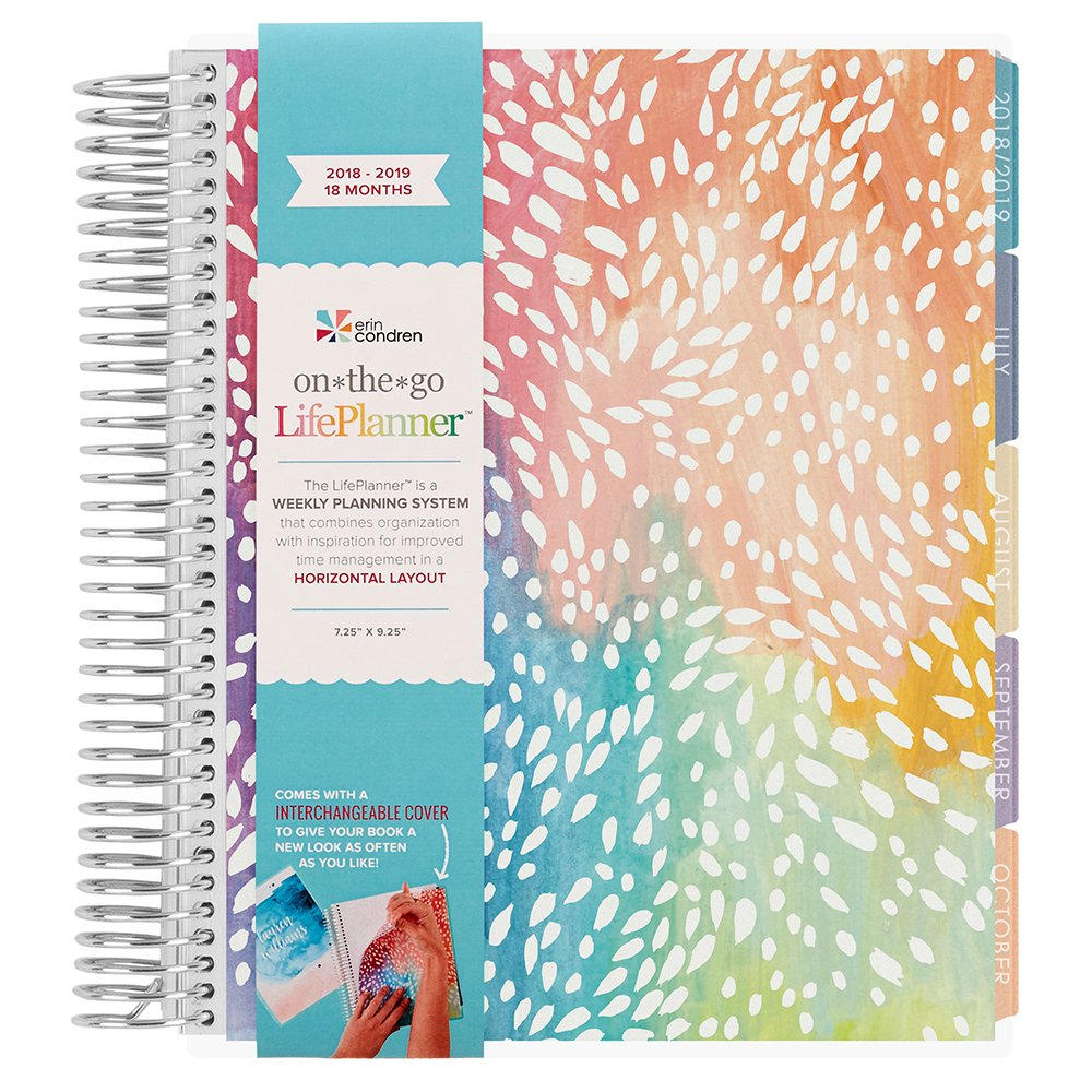 Erin Condren 2018-2019 18 Month LifePlanner, Painted Petals, Colorful - Horizontal (Colorful Layout) July - Dec