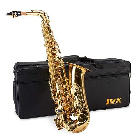 lyxjam para saxofón alto – E Flat Sax Kit para principiantes ...