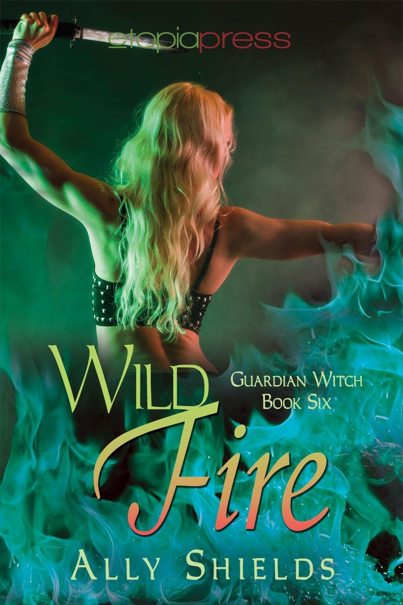Wild Fire Guardian Witch Shields