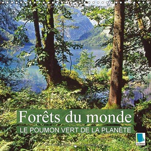 Forêts du monde - le poumon vert de la planète : La forêt - Des oasis de paix et de détente. Calendrier mural 2017 ~ Calvendo