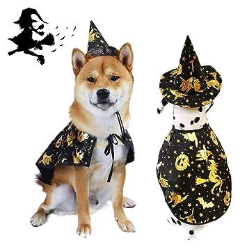 Amazon.com: Vehomy - Capa de Halloween para perro, con ...