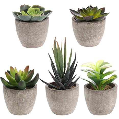 Vasi Per Piante Grasse.Yardwe 5 Pz Artificiale Succulente Piante In Vasi Piante Grasse Finte Pianta Artificiale Da Interno Faux Succulente In Vaso Finto Cactus Piante Bonsai
